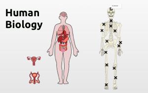 Teach and study human biology using SpaceDraft