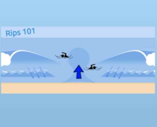Surf lifesaving: Rips